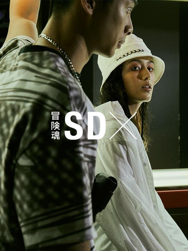 SDX img